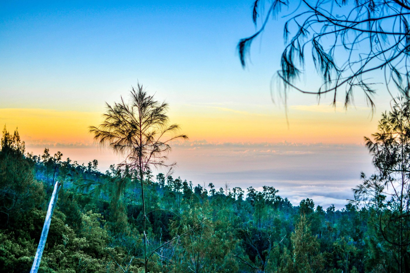 Kawah Ijen Java KawahIjen indonésie porteurs de souffre icietlabas blogvoyage blog voyage