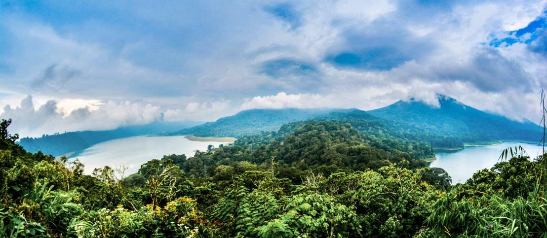monkey sacred forest forêt sacrée des singes indonésie bali blogvoyage blog voyage