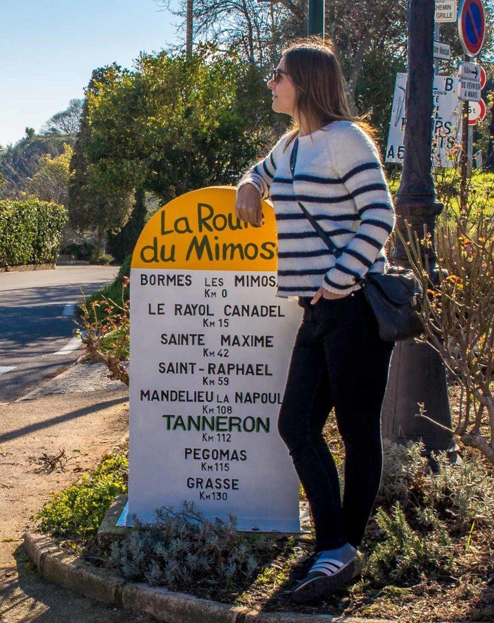 Mimosas tanneron route du mimosa paca provence blogvoyage blog voyage icietlabas (6)