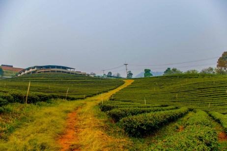 Voyage en Thaïlande blog de voyage