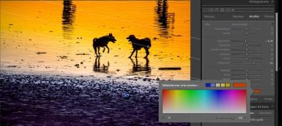 retoucher un coucher de soleil avec lightroom blogvoyage icietlabas-Chiens