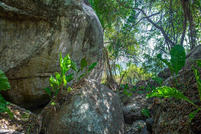 Tayrona National Parc Trois semaine en Colombie Blog Voyage-7