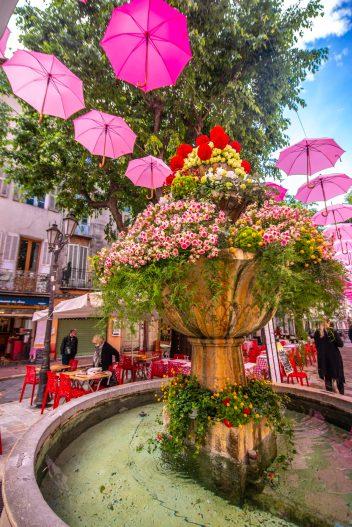 Exporoses Que faire en provence alpes cote d'azur Grassse aux roses blog voyage