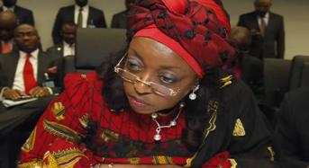 Reps Summon Petroleum Minister Over Workers Strike, Oil Field Sale