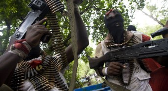 Bayelsa Guber Poll: Ex-Militant Sues For Peace