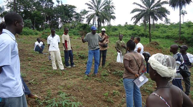 USAID Food Security