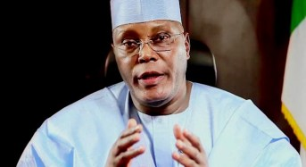 Atiku's Presidential Ambition Tears Adamawa APC Apart