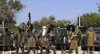 Wanted Boko Haram Fighter Surrenders