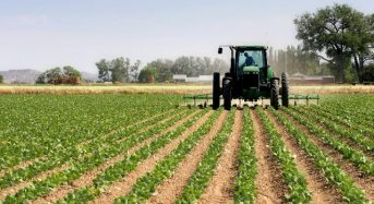 The untapped land in Kogi alone can create five Lagos cities, says agriculturist