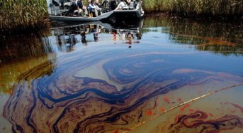 Trees, animals dying, as spill from Shell's oil field devastates Bayelsa community