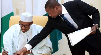 Buhari 'directs' MDAs to compile names of looters for publication