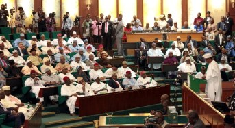 The national assembly as roadblock to anti-corruption