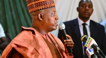 'Non-northerners are better' — Shettima says northern Lafiya Dole commanders 'failed woefully'