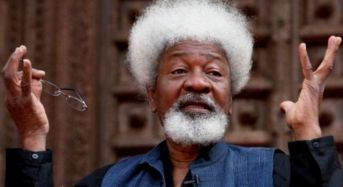 Soyinka hits lawmakers over bill proposing death penalty for hate speech