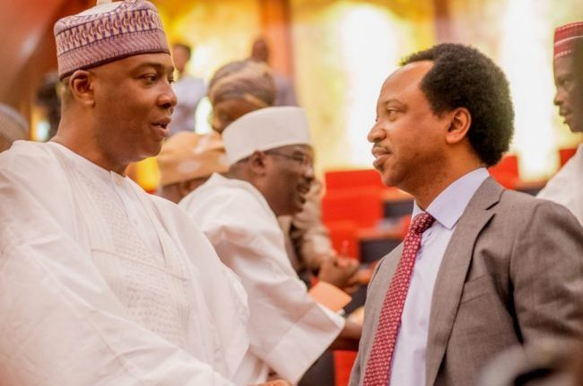 Image result for Why APC senators refused to remove Saraki as senate president – Shehu Sani
