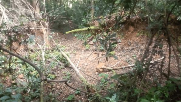 Illegal mining - Atewa