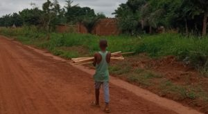A young Beninese carries planks of sawn timber in Zakpota. Credit: 'Kunle ADEBAJO