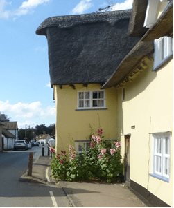Hollyhocks Thatched Cottage