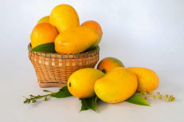 Mango is the most searched fruit on the NRTC Fresh platform