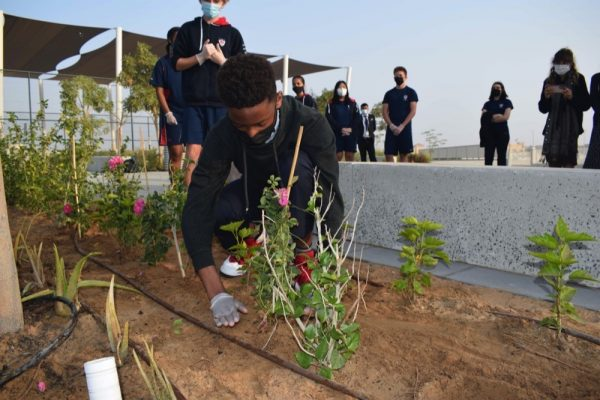 Dwight School Dubai students create and execute sustainable