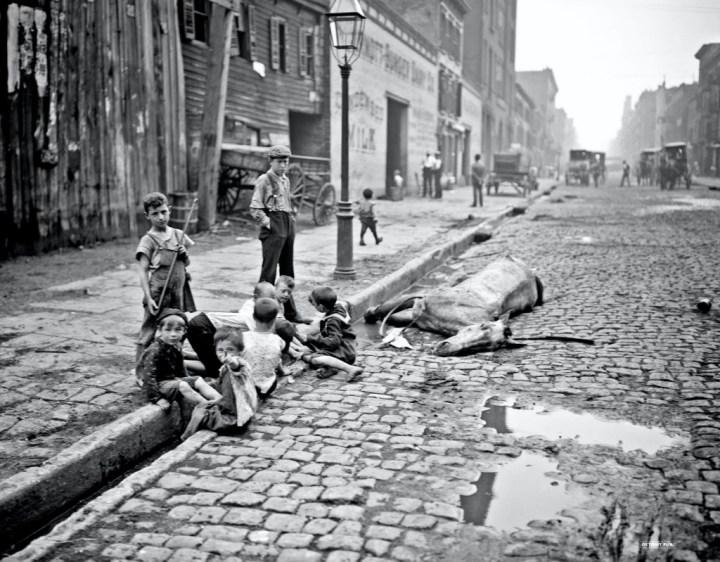Coches y caballos: caballo muerto abandonado en la calle