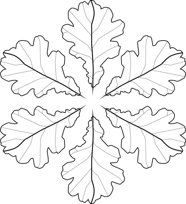 fall leaves coloring page # 74