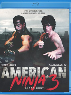 american-ninja-3