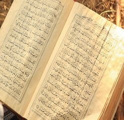 Reality of 'Missing' Qur'anic Verse on Suckling
