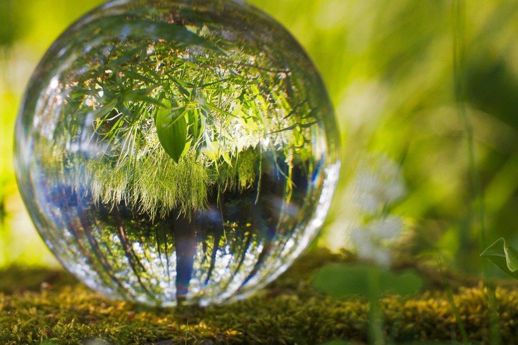 ball, environment, grass