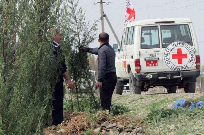 Trees planted along the road will help keep villagers safe from bullets.