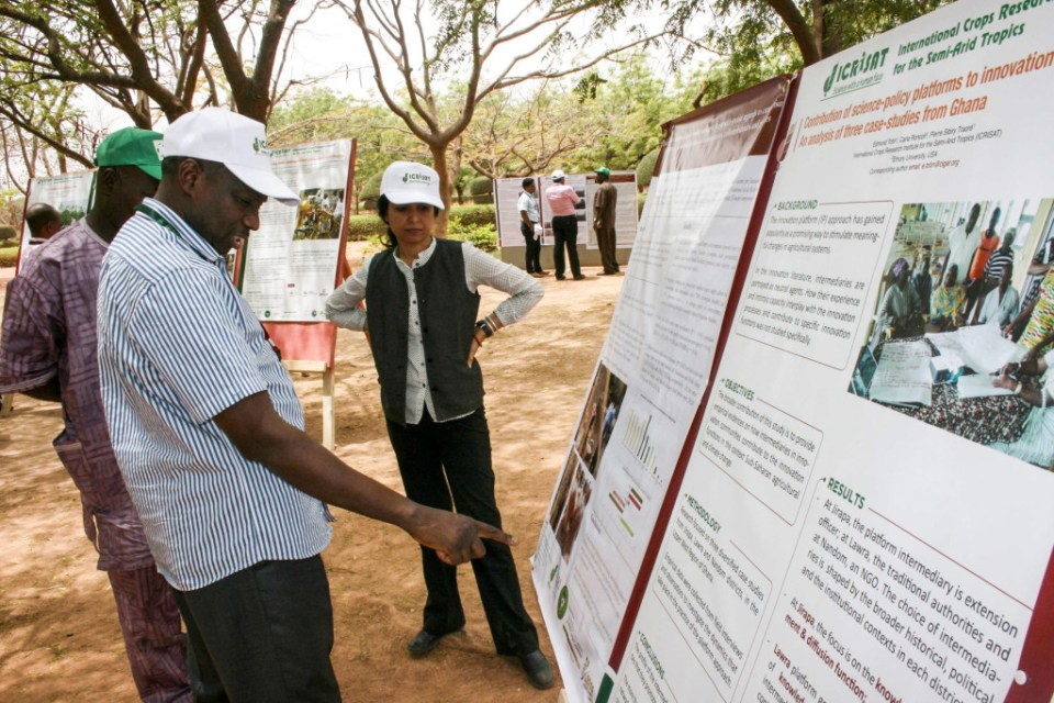 Participants view the research posters on display during the regional planning meeting. Photo: A Diama, ICRISAT