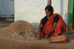 Groundnut shelling