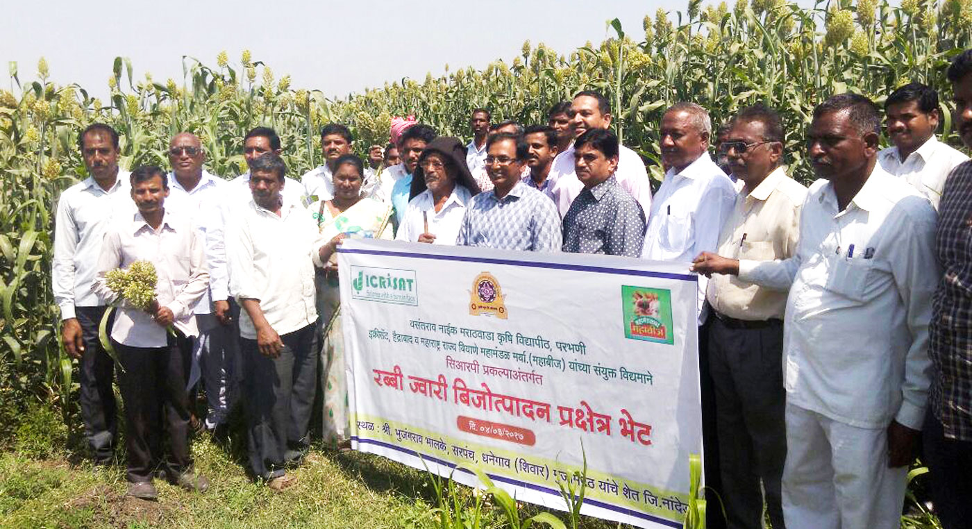 Participants at the farmers' field visit at Dhanegaon, Maharashtra Photo: Rushikesh Aundhekar