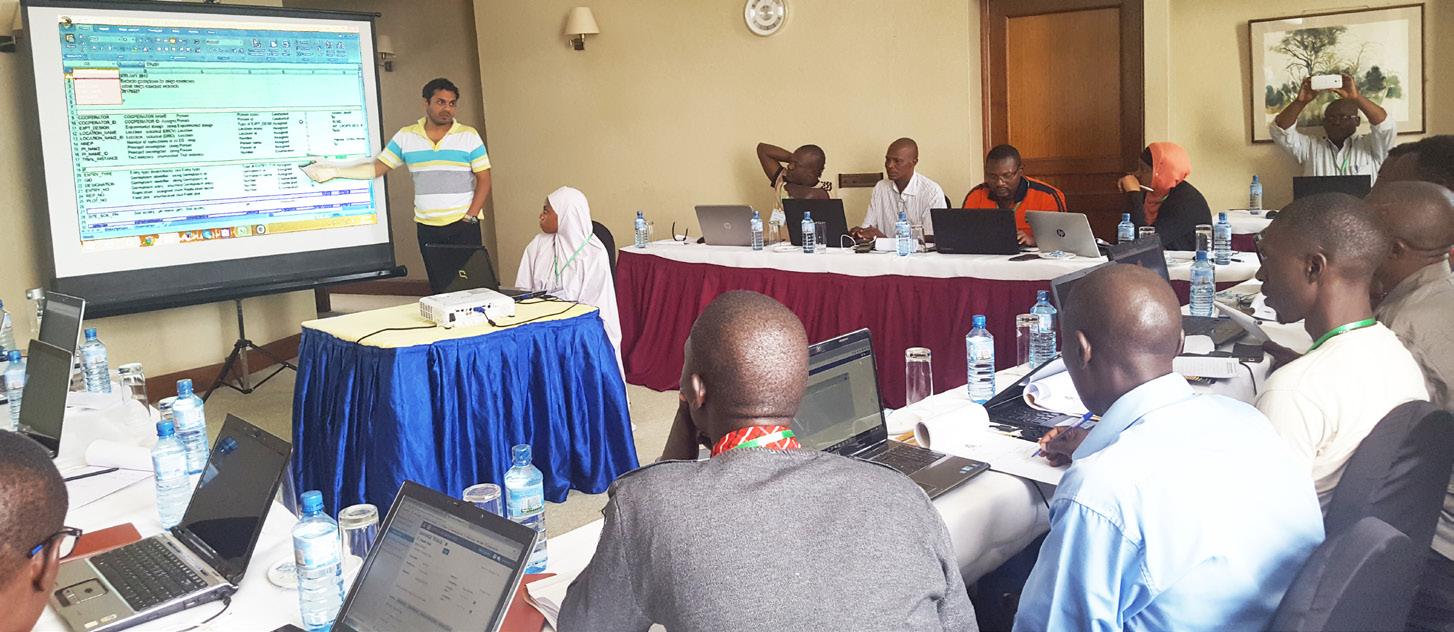 Participants from Nigeria, Ethiopia, Tanzania, Uganda and Burkina Faso at the workshop. Photo: D Roma, ICRISAT