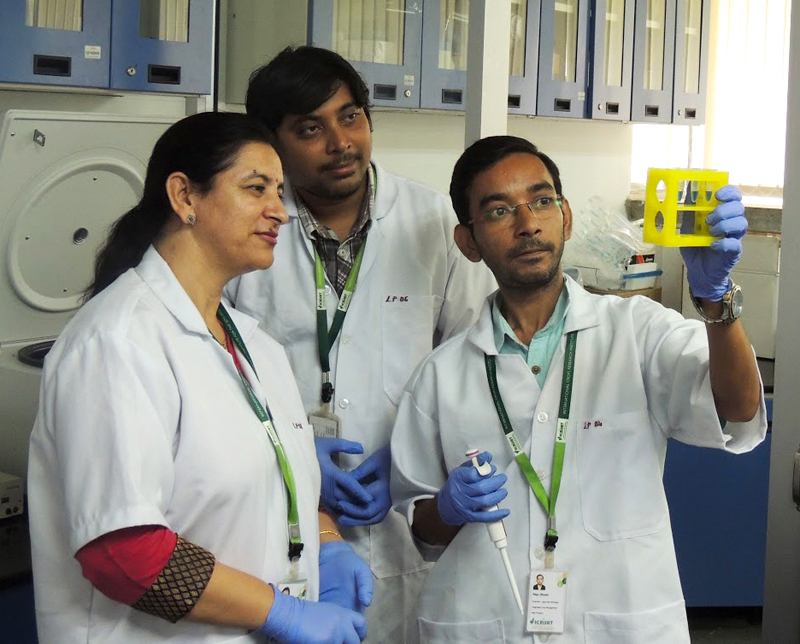 Dr Mamta Sharma checking chickpea DNA using LAMP.