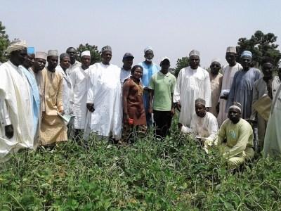 Farmers gather for a field day at Dawakin.