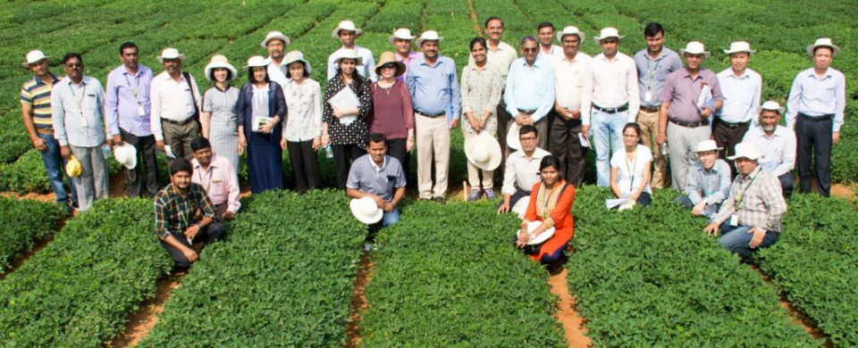 Participants of the Groundnut Network Group-Asia meeting. Photo: ICRISAT