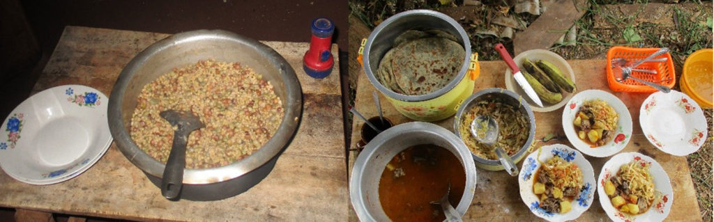 Photos from the treatment site reveal more food groups. Photos: Project participant