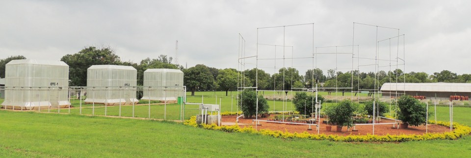 Open top chambers (OTCs) and Free-air CO2 enrichment (FACE) facility for climate change research on plant protection at ICRISAT. Photo: ICRISAT