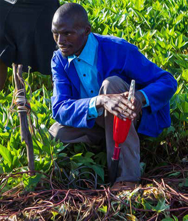 A farmer connects a Chameleon reader to soil moisture sensors buried in his plot. Photo: Andre van Rooyen, ICRISAT