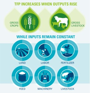 Total Factor Productivity. Courtesy: Global Harvest Initiative