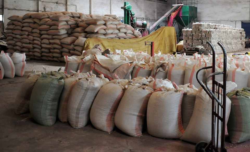 Faida seed company's warehouse. Photo: ICRISAT