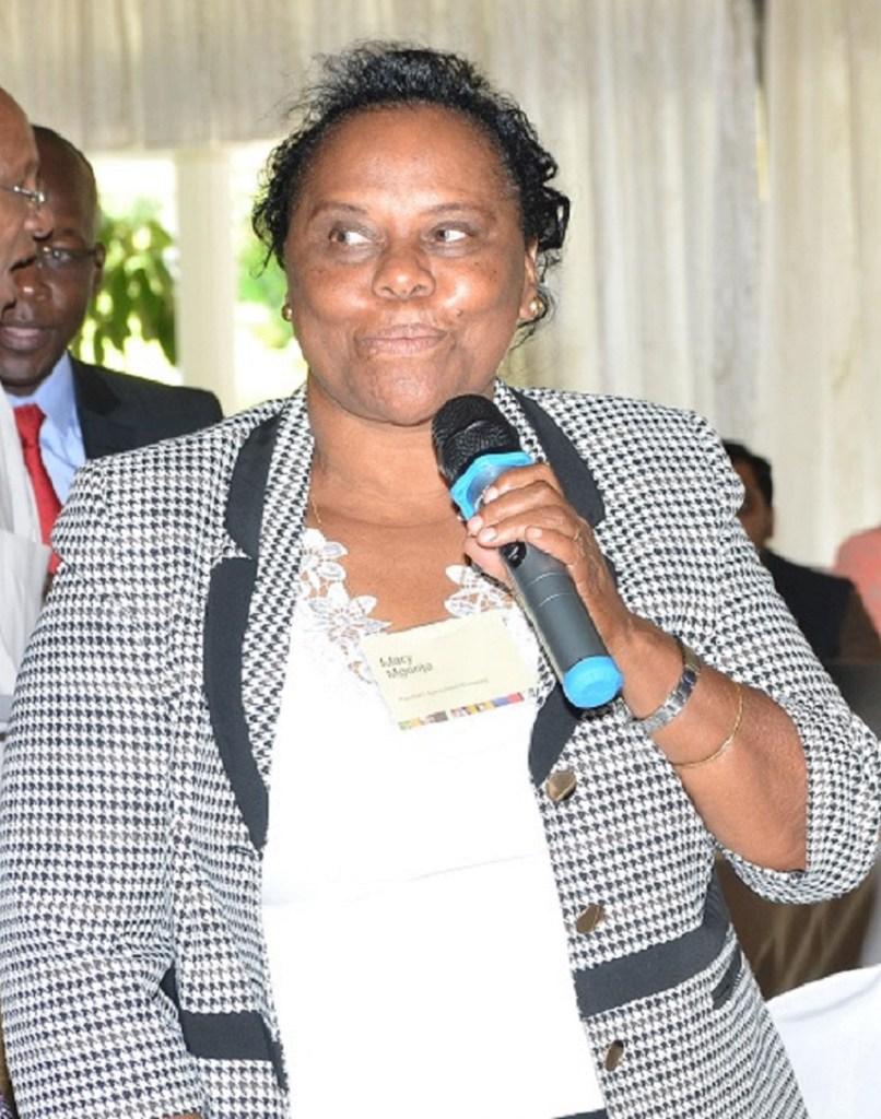 Dr Mary Mgonja, sorghum entrepreneur. Photo: Avisa Project