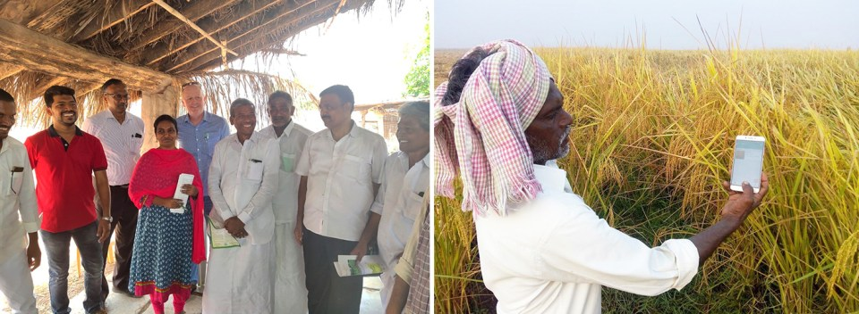 Left: Dr Anthony Whitbread, Research Program Director for Innovation Systems for the Drylands and Dr KPC Rao, Honorary Fellow – ICRISAT, interacting with farmers and other team members. Right: A farmer using agro-advisories. Photo: ICRISAT