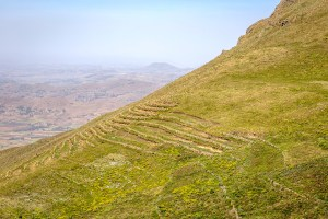 Terraced fields on the Yewol highlands. Photo: Mulugeta Ayene/WLE