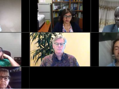 Scientists and regulatory experts discuss the current global regulatory scenario for gene editing during one of the webinars. Photo: ICRISAT