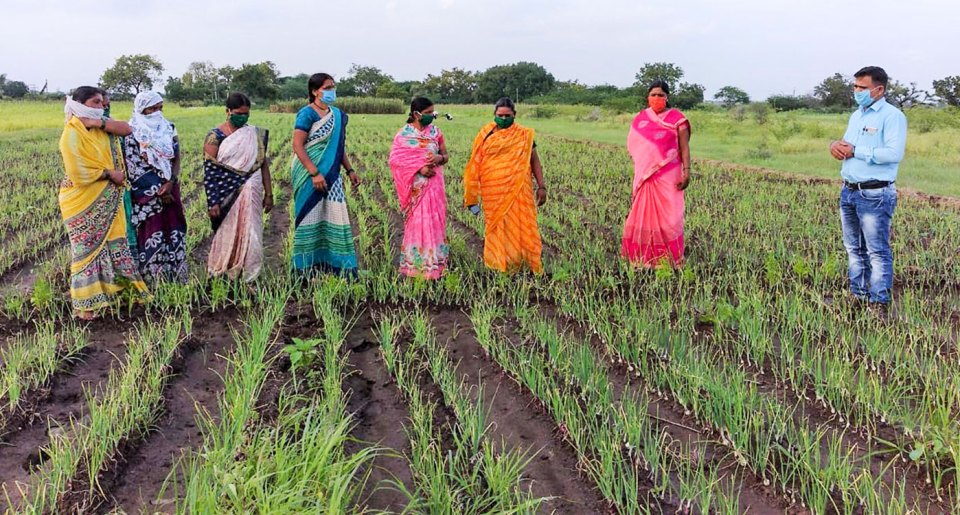 BharatAgri field staff member (far right) interacting with farmers. Photo: BharatAgri