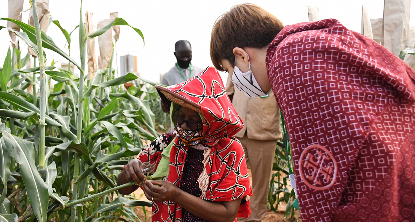 Mrs Sabine Togola, Research Technician (L) and Ms Ioana Albulescu, Team Leader-Green Inclusive Growth, EU Delegation to Mali, during a visit to a sorghum field. Photo: N Diakité, ICRISAT