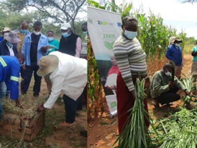 A practical class on haymaking (left) and silage making (right) at Matobo District Agriculture Centre of Excellence. Photo: Farai Dube, ICRISAT