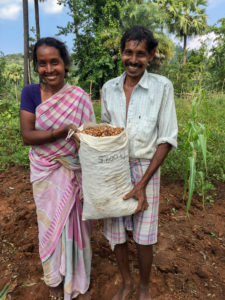 Tribal farmers with their yield of groundnut foundation seed. Photo: Rajesh Nune, ICRISAT